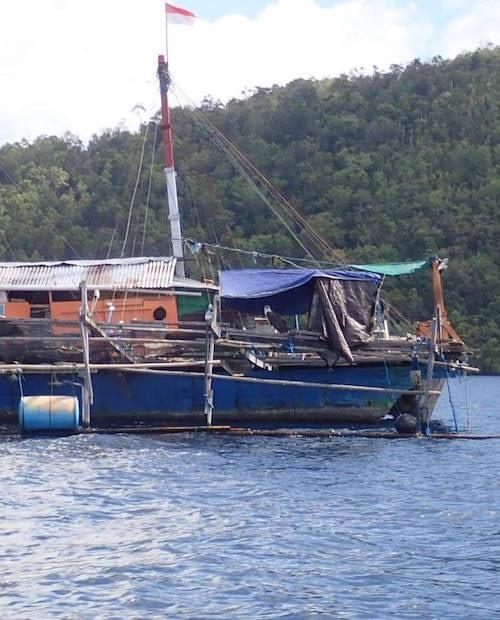 Began Fishing Raja Ampat Marine Park