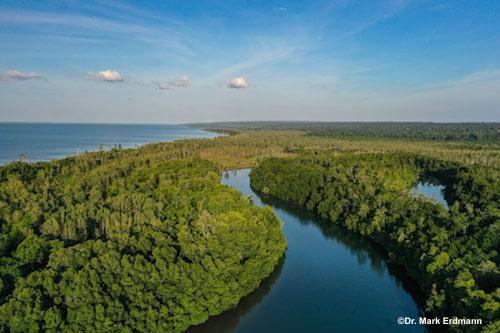 North Misool Marine Protected Area